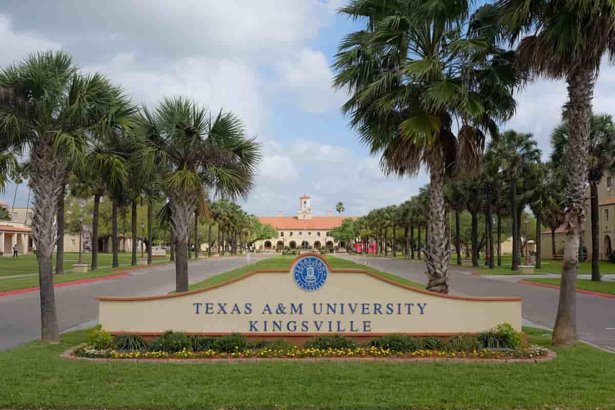 منحة جامعة تكساس إيه آند إم لدراسة البكالوريوس والماجستير في أمريكا